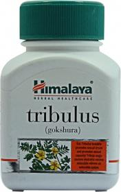 TRIBULUS TABLET
